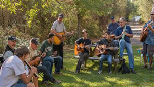 American river music, festival camping options